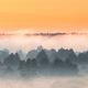 Misty Landscape. Scenic View. Morning Sky Over Misty Forest. Nat - PhotoDune Item for Sale