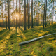 Belarus. Beautiful Sunset Sunrise Sun Sunshine In Sunny Summer C - PhotoDune Item for Sale
