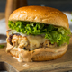 Spicy Homemade Chipotle Chicken Burger - PhotoDune Item for Sale