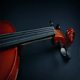 Violin Revealed Under Velvet - VideoHive Item for Sale