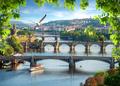 Bridges in a row - PhotoDune Item for Sale