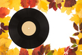 Composition of autumn leaves with the recording disk. - PhotoDune Item for Sale