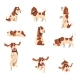 Beagle Dog in Various Poses - GraphicRiver Item for Sale