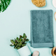 Free Download Green cosmetics flat lay with succulent plant Nulled