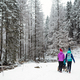 Mother with baby stroller enjoying motherhood in winter forest - PhotoDune Item for Sale