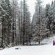 Two women winter hiking with baby stroller, mother and baby - PhotoDune Item for Sale
