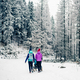 Two women with baby stroller enjoying motherhood in winter fores - PhotoDune Item for Sale