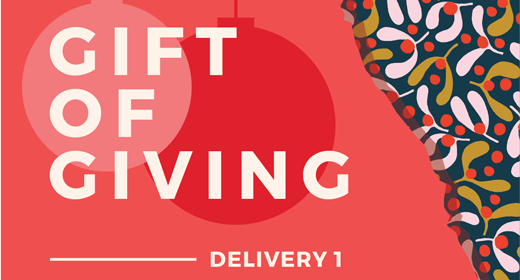 Gift of Giving Freebies - 1st Delivery