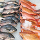 Free Download Fresh fish for sale at a market Nulled