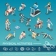 Isometric People In Gym Collection - GraphicRiver Item for Sale