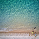 Free Download Beautiful beach with family drone shot Nulled