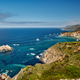 Free Download Pacific coast landscape in California Nulled
