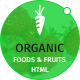 Organic Food and Fruits Template - ThemeForest Item for Sale