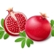 Ripe Juicy Pomegranate - GraphicRiver Item for Sale