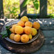 Apricots in plate outdoors - PhotoDune Item for Sale
