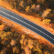 Aerial view of the road in beautiful forest at sunset - PhotoDune Item for Sale