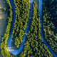 Aerial view of green pine forest and a country serpentine road captured from a drone above - PhotoDune Item for Sale