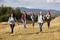 Multi ethnic group of five happy young adult friends walking on a rural path  - PhotoDune Item for Sale