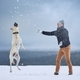Man playing with dog in winter landscape - PhotoDune Item for Sale