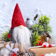 Christmas composition with the gnome, gifts and festive decorati - PhotoDune Item for Sale