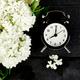 Black alarm clock and white flowers on black background. - PhotoDune Item for Sale