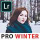 Pro Winter Lightroom & Photoshop Presets - GraphicRiver Item for Sale