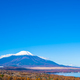 Free Download Beautiful fuji mountain in yamanakako or yamanaka lake Nulled