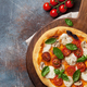 Free Download Italian pizza with tomatoes, mozzarella and basil Nulled