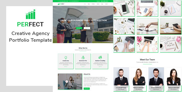 Perfect- Creative Agency Portfolio Template