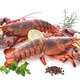 Free Download lobsters in studio Nulled