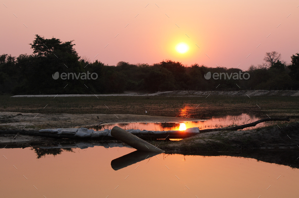 Sunset in Okavango delta - Stock Photo - Images