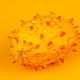 Kiwano, whole fruit on orange background - PhotoDune Item for Sale