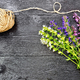 Free Download Savory leaves and flowers with twine on black board Nulled