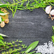 Frame from herbs and garlic on black board - PhotoDune Item for Sale