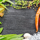 Free Download Frame from herbs and pepper on black wooden board Nulled
