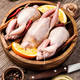 Fresh raw meat quails - PhotoDune Item for Sale