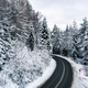 Free Download Curvy road line in winter scenery, aerial view Nulled