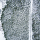 Free Download Winter season aerial top down view of a road in forest Nulled