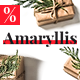 Amaryllis – Responsive Christmas Email Template + StampReady Builder - ThemeForest Item for Sale