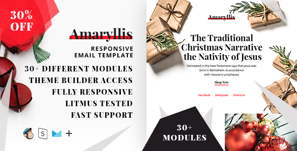 Amaryllis  – Responsive HTML Email + StampReady, MailChimp & CampaignMonitor compatible files by ThemesCode