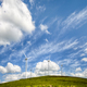 Free Download Wind turbines on a hill under a blue sky Nulled