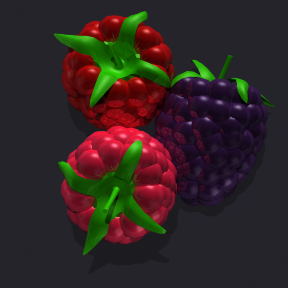 3D models of the Raspberry set - 3DOcean Item for Sale