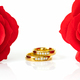Red roses and gold rings on white_-4 - PhotoDune Item for Sale