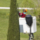 Equiped worker pruning a cypress on a crane. Gardening works - PhotoDune Item for Sale
