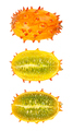 Kiwano, horned melon, whole and half fruit isolated over white - PhotoDune Item for Sale