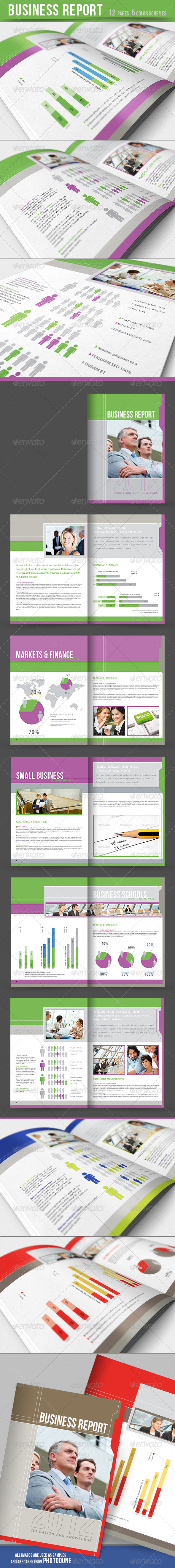 Business Report - Brochure - 5 color schemes - Corporate Brochures