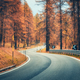 Beautiful winding mountain road in autumn forest at sunset - PhotoDune Item for Sale