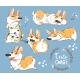 Corgi Dog Puppy Play Vector Set. Funny Fox - GraphicRiver Item for Sale