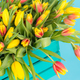 Free Download Floristics, holidays and flowers concept - a big bouquet of red and yellow tulips on blue background Nulled