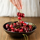 Cherries In A Bowl - PhotoDune Item for Sale